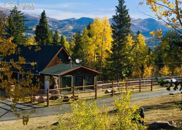 9650 S Highway 67, Cripple Creek, CO 80813 (#9642781) :: 8z Real Estate