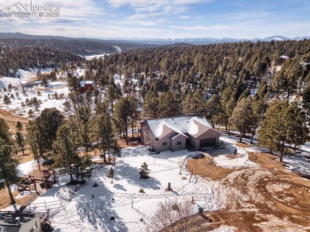 119 Summit Lake Drive, Divide, CO 80814 (#9655255) :: Tommy Daly Home Team