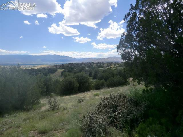 1239 Canon Ridge Road, Canon City, CO 81212 (#9658024) :: Realty ONE Group Five Star