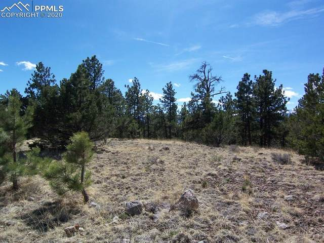 TBD County Road 29, Cotopaxi, CO 81223 (#9661405) :: Tommy Daly Home Team