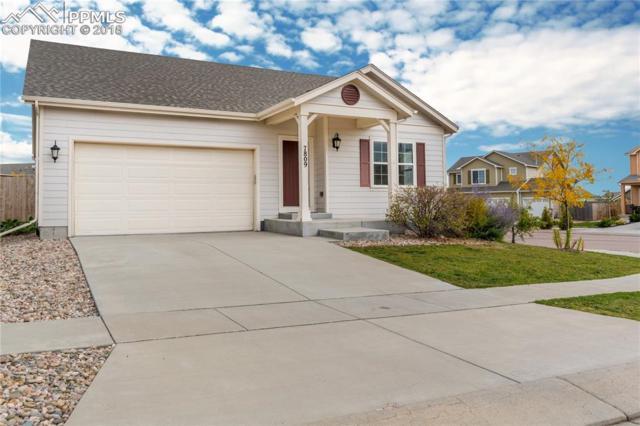 7809 Calabash Road, Colorado Springs, CO 80908 (#9661772) :: Fisk Team, RE/MAX Properties, Inc.