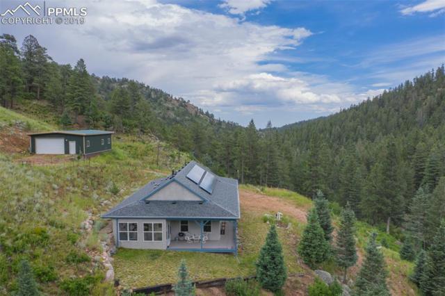 4848 Little Turkey Creek Road, Colorado Springs, CO 80926 (#9693089) :: Fisk Team, RE/MAX Properties, Inc.