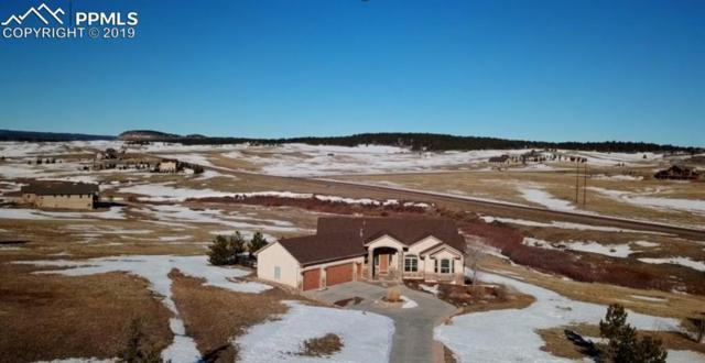 20440 Taversham Court, Monument, CO 80132 (#9720036) :: The Treasure Davis Team