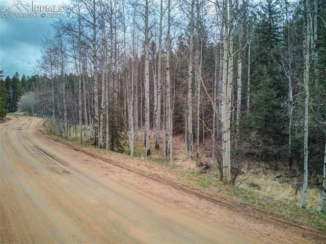 138 Snowberry Creek Drive, Florissant, CO 80816 (#9733388) :: Fisk Team, RE/MAX Properties, Inc.