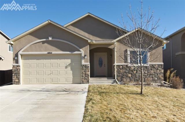 6814 Alliance Loop, Colorado Springs, CO 80925 (#9736732) :: RE/MAX Advantage