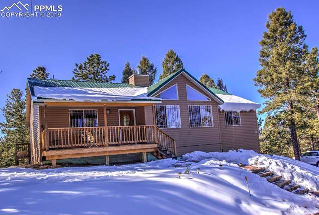 78 Gerka Lane, Florissant, CO 80816 (#9745626) :: Jason Daniels & Associates at RE/MAX Millennium