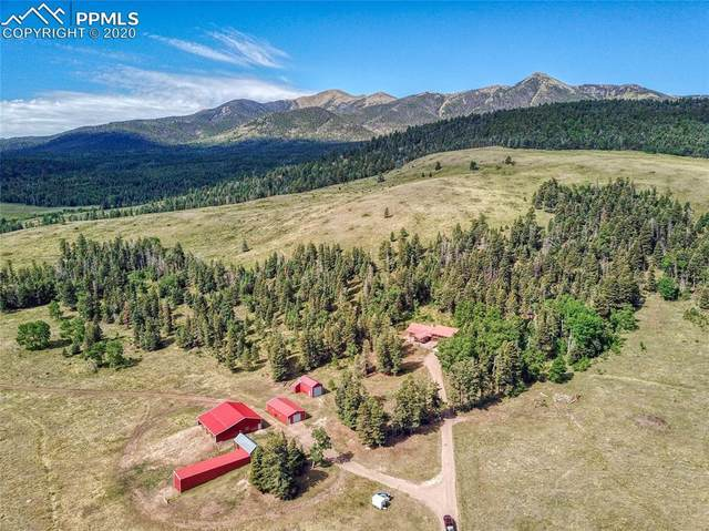 5714 County Road 111, Westcliffe, CO 81252 (#9748902) :: The Scott Futa Home Team