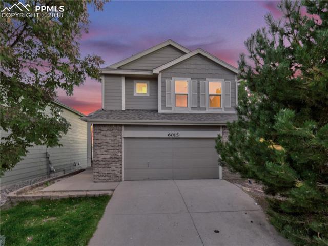 6015 Nester Way, Colorado Springs, CO 80922 (#9753275) :: 8z Real Estate