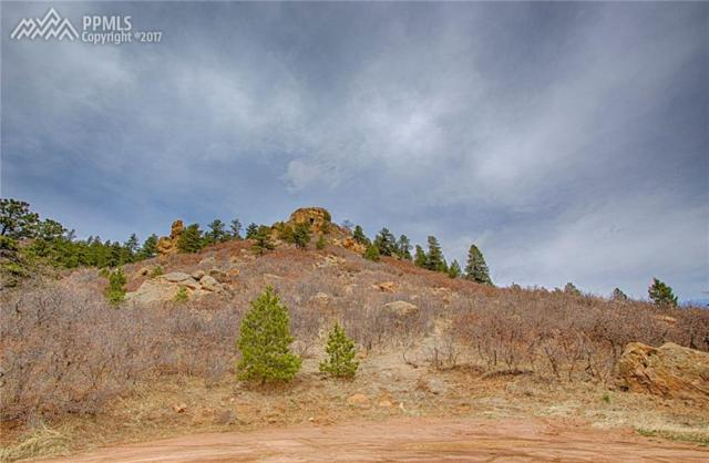 Park Street, Palmer Lake, CO 80133 (#9760219) :: 8z Real Estate