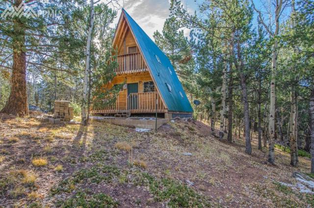 954 Timber Ridge Road, Divide, CO 80814 (#9762093) :: 8z Real Estate