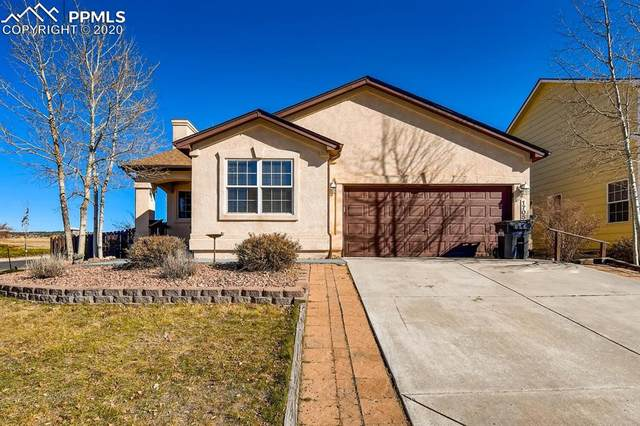 17055 Mountain Lake Drive, Monument, CO 80132 (#9762733) :: Fisk Team, RE/MAX Properties, Inc.