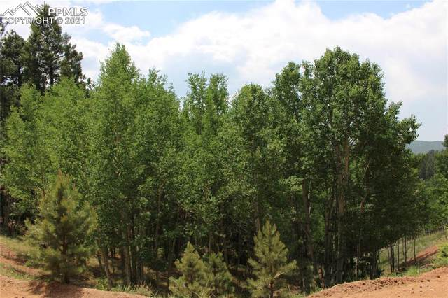 421 Calcite Drive, Divide, CO 80814 (#9763629) :: Tommy Daly Home Team