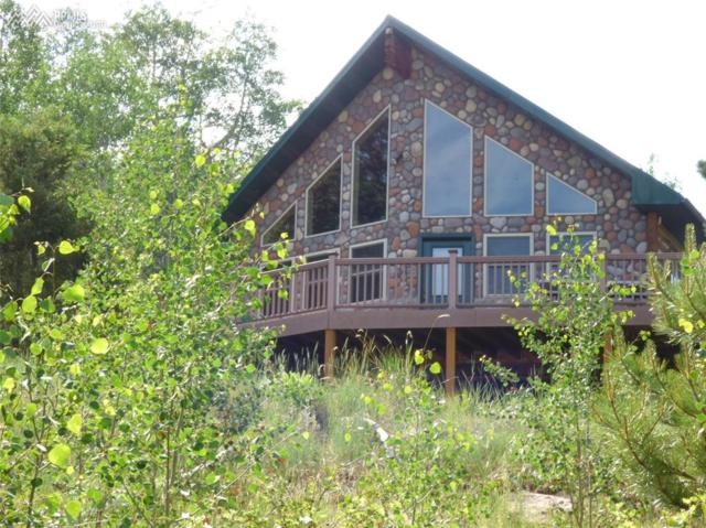 23000 County 67 Road, Victor, CO 80816 (#9774208) :: 8z Real Estate