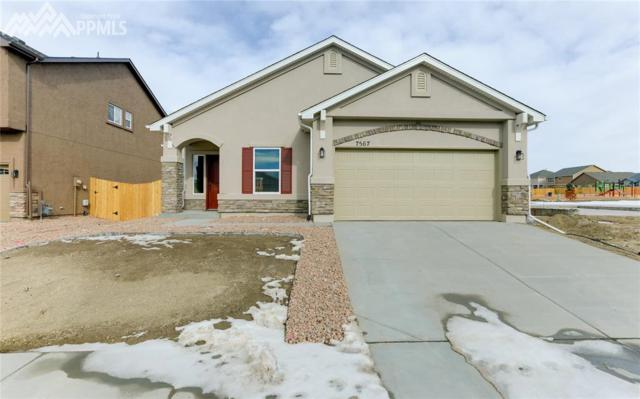 7567 Cat Tail Creek, Colorado Springs, CO 80923 (#9803268) :: Action Team Realty