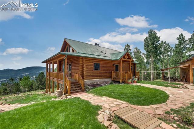 6837 Gold Camp Road, Victor, CO 80860 (#9809115) :: 8z Real Estate