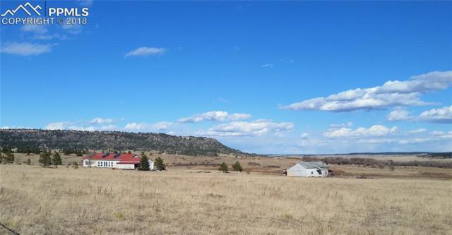 19205 Birdseye View, Peyton, CO 80831 (#9816622) :: The Peak Properties Group