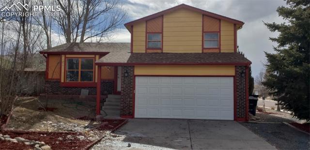 8165 Freemantle Drive, Colorado Springs, CO 80920 (#9825829) :: Colorado Home Finder Realty