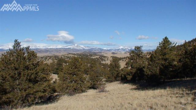 1353 Summit Road, Hartsel, CO 80449 (#9872148) :: 8z Real Estate