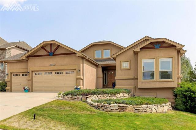 12615 Berrywood Drive, Colorado Springs, CO 80921 (#9874832) :: 8z Real Estate