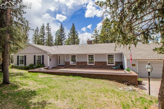 121 Worley Road, Divide, CO 80814 (#9881989) :: Action Team Realty