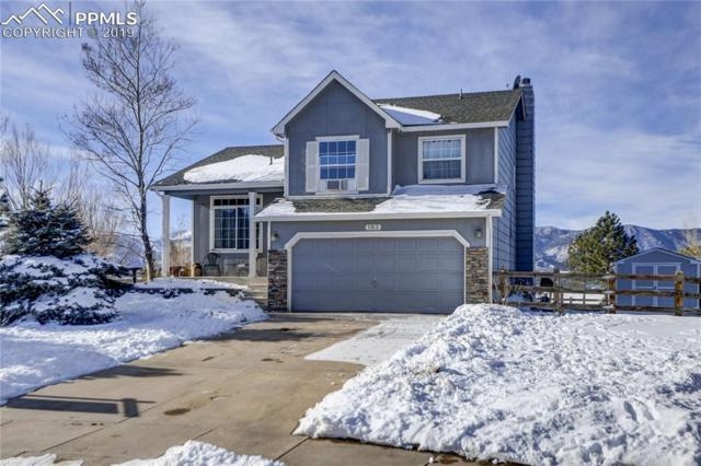183 Misty Creek Drive, Monument, CO 80132 (#9885584) :: The Dunfee Group - powered by eXp Realty