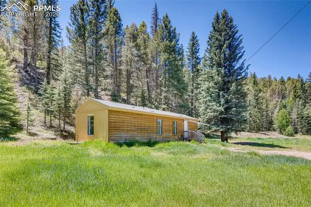 4019 County Road 1, Cripple Creek, CO 80813 (#9888225) :: 8z Real Estate