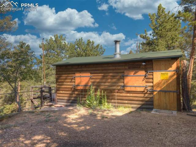 1423 Blossom Road, Woodland Park, CO 80863 (#9896396) :: The Dixon Group