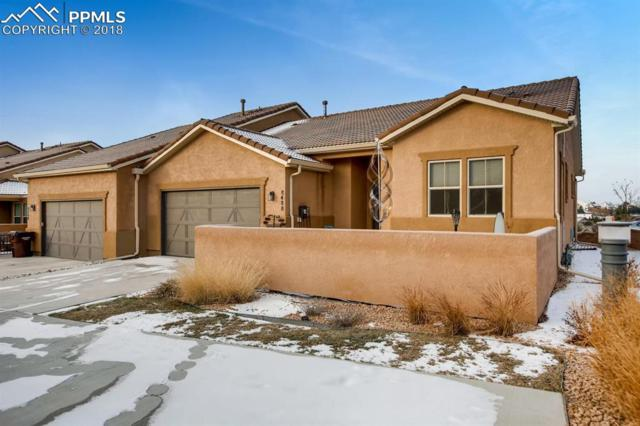 8488 Grand Peak Vista Point, Colorado Springs, CO 80920 (#9940194) :: The Treasure Davis Team