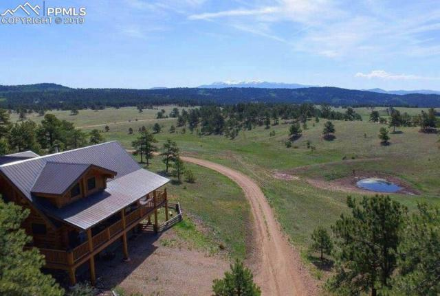 2333 County 403 Road, Florissant, CO 80816 (#9954615) :: Action Team Realty