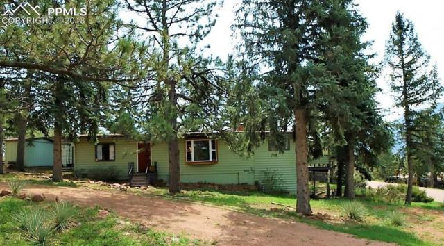 7795 Severy Avenue, Cascade, CO 80809 (#1035174) :: Jason Daniels & Associates at RE/MAX Millennium