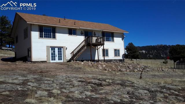 21 Peak Drive, Guffey, CO 80820 (#1120073) :: Colorado Home Finder Realty