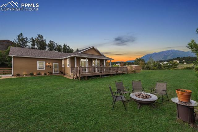 18590 Cloven Hoof Road, Palmer Lake, CO 80133 (#1130787) :: Tommy Daly Home Team