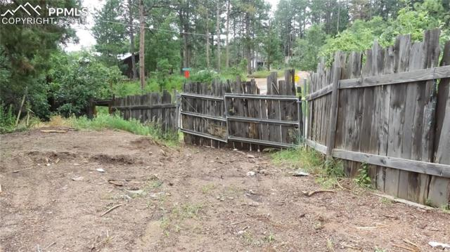 0 Shady Lane, Palmer Lake, CO 80133 (#1170911) :: Tommy Daly Home Team