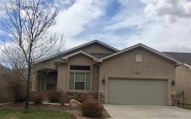 1234 Ethereal Circle, Colorado Springs, CO 80904 (#1187865) :: The Treasure Davis Team