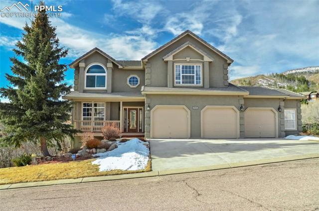 2945 Needlecone Lane, Colorado Springs, CO 80919 (#1212356) :: Jason Daniels & Associates at RE/MAX Millennium