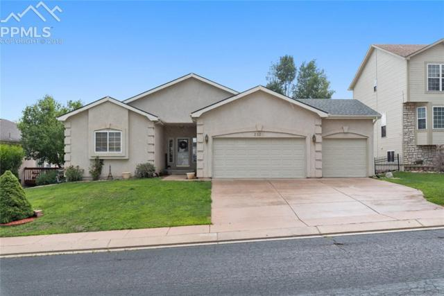 2320 Pinhigh Court, Colorado Springs, CO 80907 (#1225595) :: Jason Daniels & Associates at RE/MAX Millennium