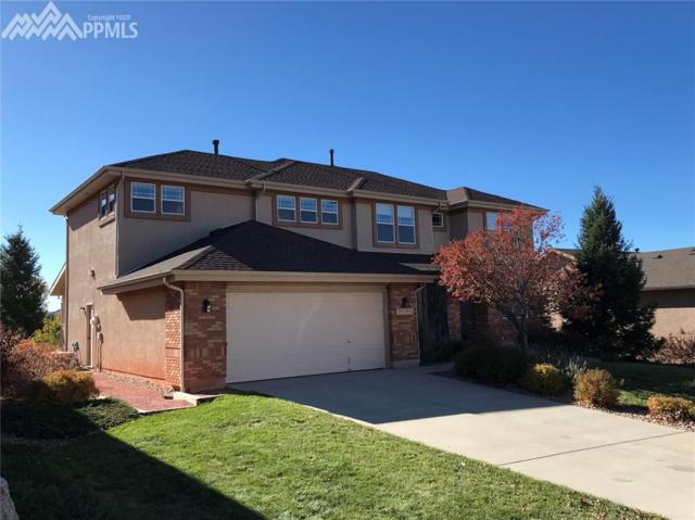 3123 Deergrass Place, Colorado Springs, CO 80920 (#1238538) :: Jason Daniels & Associates at RE/MAX Millennium