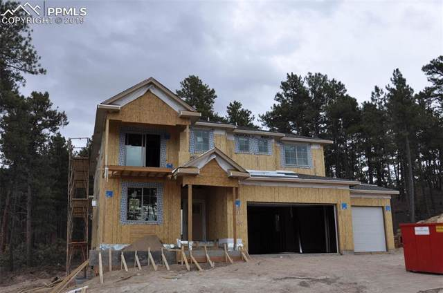 15993 Enchanted Peak Way, Monument, CO 80132 (#1253132) :: 8z Real Estate