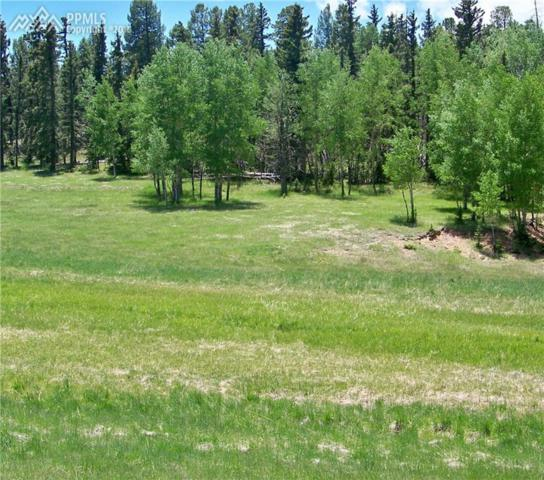 Tract 4 County 42 Road, Divide, CO 80814 (#1267955) :: Colorado Home Finder Realty