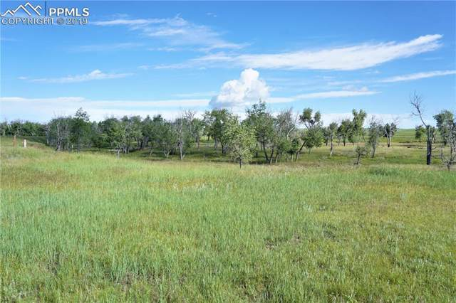 0 Resolis Road, Matheson, CO 80830 (#1360476) :: The Treasure Davis Team