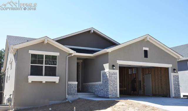 1525 Catnap Lane, Monument, CO 80132 (#1390629) :: Tommy Daly Home Team