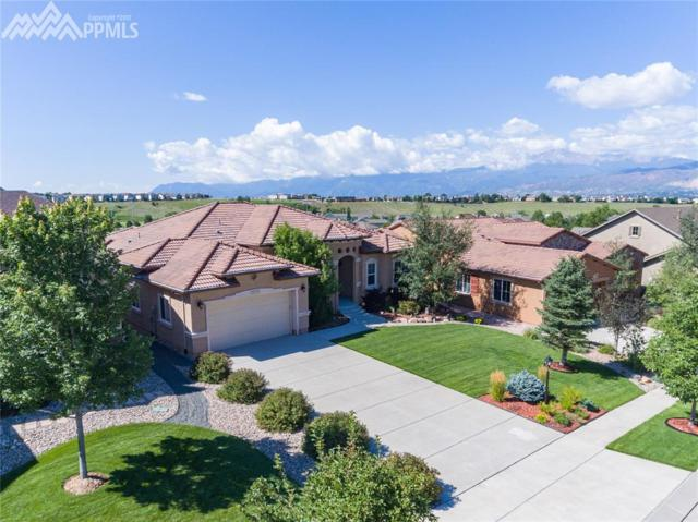 3675 Cherry Plum Drive, Colorado Springs, CO 80920 (#1448518) :: Jason Daniels & Associates at RE/MAX Millennium