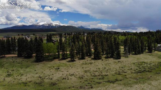 195 Joshua Road, Divide, CO 80814 (#1514242) :: Action Team Realty