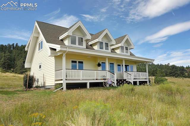 235 Centennial Circle, Westcliffe, CO 81252 (#1552090) :: CC Signature Group
