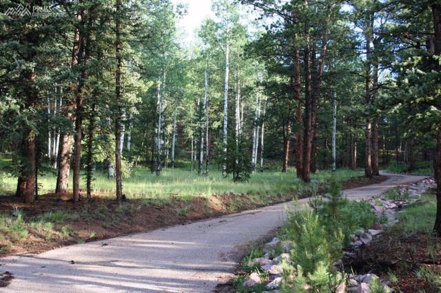 492 Nichole Grove, Woodland Park, CO 80863 (#1602633) :: 8z Real Estate