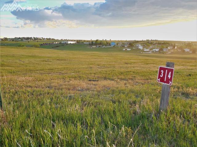 34187 Southern Cross Trail, Kiowa, CO 80117 (#1606812) :: 8z Real Estate