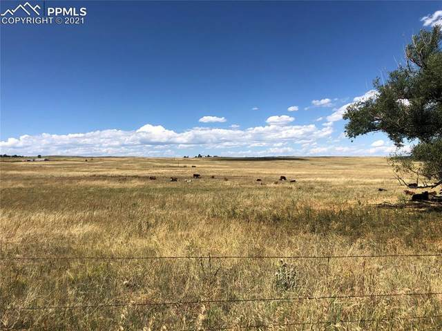 0000 Soap Weed Road, Calhan, CO 80808 (#1630175) :: The Treasure Davis Team | eXp Realty