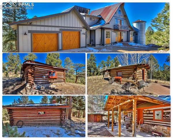 4273 Cedar Mountain Road, Divide, CO 80814 (#1692803) :: The Cutting Edge, Realtors