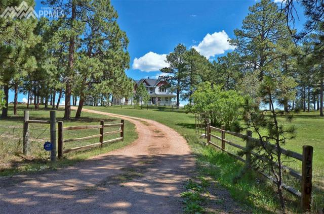 15750 Arfsten Road, Larkspur, CO 80118 (#1757423) :: Harling Real Estate