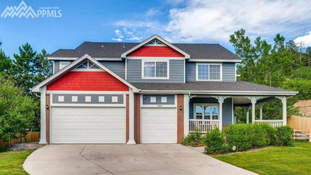 1394 Whitetail Drive, Castle Rock, CO 80104 (#1761545) :: 8z Real Estate